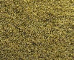 wild grass texture. Mini-Ground Mat, Wild Grass, Light Green Standard 1 Grass Texture