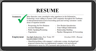 Resume Example Summary Executive Summary Example Resume Resume Templates Summary For Resume 44