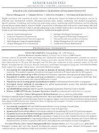 Executive Resume Example Executive Resume Templates Free Samples