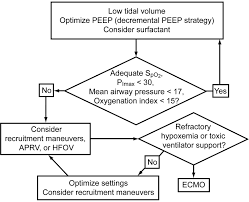 Pediatric Acute Respiratory Distress Syndrome Respiratory Care