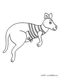 Small Picture Kangaroo coloring pages Hellokidscom