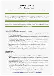Insurance Agent Resume Pleasant Insurance Agent Resume
