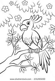cute parrot sitting on the flowered tree in the forest
