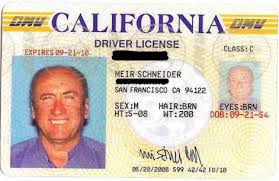 Center — For Healing Schneider's Driverslicense Meir Self