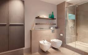 View in gallery A low-profile toilet and bidet combo