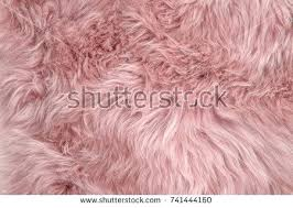 rug background pink sheepskin rug background wool texture close up sheep fur pink furry rug background