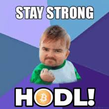Unlike traditional currencies such as dollars, bitcoins are issued and managed without any central authority. Hodl Gifs Tenor