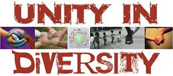 n culture unity in diversity essay article