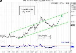 Purchasing Power In Silver Silverseek Com