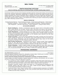 Business Development Manager Resume 100 Sales Business Plan Example Model Resumed For Manager Template 98