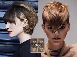 10 Colors The Short Hair Fall 2015 Winter 2016 Mokka Hair