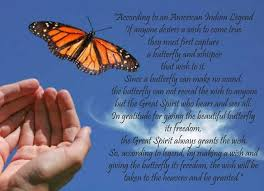 Beautiful Butterfly Quotes Best of The 24 Best Butterflies Images On Pinterest Butterflies Butterfly