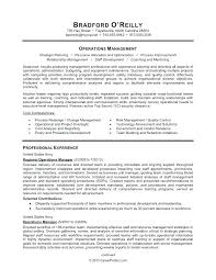 Here To Download This It Security Professional Resume Template ...