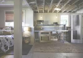 basement apartment design ideas. Inspirational Basement Apartment Design Ideas - Living Room Regarding