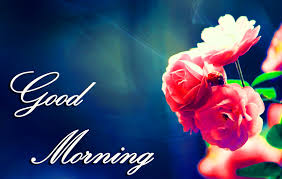 good morning images wallpaper photo pictures pics free with flower