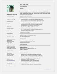 Free Download 59 Professional Resume Template Picture Professional