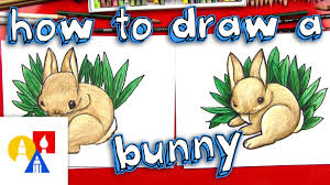 Art For Kids How To Draw A Realistic Bunny Art For Kids Hub