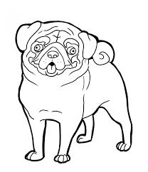 pug clipart coloring page 8