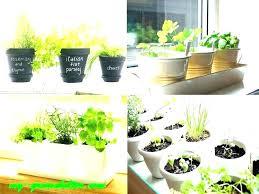 indoor hydroponic herb garden kit indoor hydroponic herb garden best indoor herbs interior herb garden best