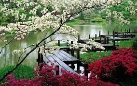 Spring Zen Garden Wallpapers ...