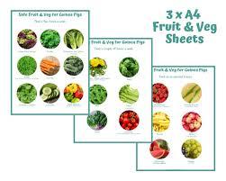 Vegan Nutrition Chart Pdf Guinea Pig Safe Fruit And Veg List Printable Pdf Feeding Chart Best Veggies Fruit For Daily Diet
