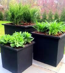 planters for outdoors garden design