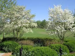 garden keepers ltd richmond va 23226