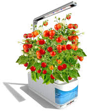 indoor hydroponic herb garden kit hydroponics growing system herb garden light for tomatoes plants 360 degree adjustable arm low water alarm
