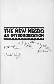 the new negro renaissance home · essays