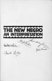 the new negro renaissance home · essays
