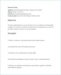 Delivery Driver Resume Enchanting Delivery Driver Resume Beautiful Resume Format Word Lordvampyrnet