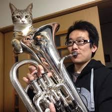 Cats, Beavers & Ducks — Cat mute for euphonium. Video/caption/photo...
