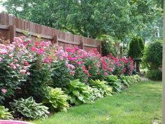 Landscaping Along Privacy Fence   Wood Fence: Residential - Houston Fence  Company   Gardens and