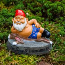 garden gnome. Plain Gnome The Hot Stuff Garden Gnome With