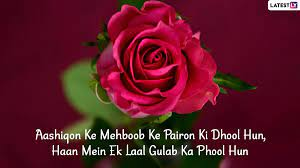 Rose Day 2021 Shayari Images & SMS in ...