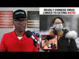 Image result for why chinese eat bats?