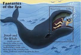 про синего кита для детей Доклад про синего кита для детей