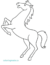 Free Horse Coloring Pages Horse Coloring Pages Fresh Appaloosa Page