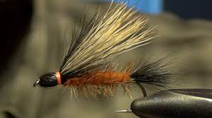 Salmon Fly Patterns Extraordinary Henry's Fork Salmon Fly Tying Directions YouTube