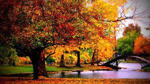 Autumn Desktop Wallpapers (68+ ...