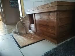 Hallo, meine katze war bis jetzt immer stubenrein aber heute habe ich neben dem katzenklo kot gefunden. Zwei Katzenklos Fur 1 Kater