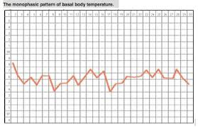 Lifeissues Net Basal Body Temperature Assessment Is It