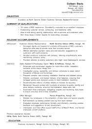 Resume Sample Customer