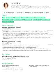 Bistrun Professional Accomplishments Resume Examples Professional