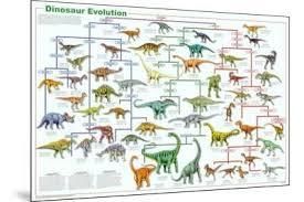 Dinosaur Charts Wall Art At Allposters Com