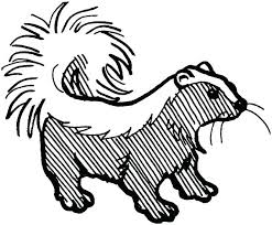 Skunk Pictures To Color Skunk Coloring Page Skunk Coloring Pages