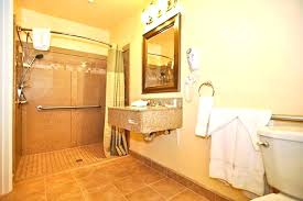 Accessible Bathroom Design Awesome Decoration
