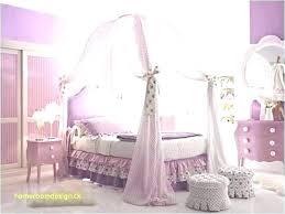 canopy bed for girl – collegesainteanne.net