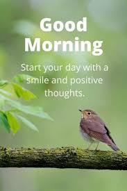 Good Morning Quotes Good Morning Start Your Day Smile And Positive Unique Positive Quote Of The Day