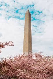 Washington Monument (Tickets, Visiting Tips and More)